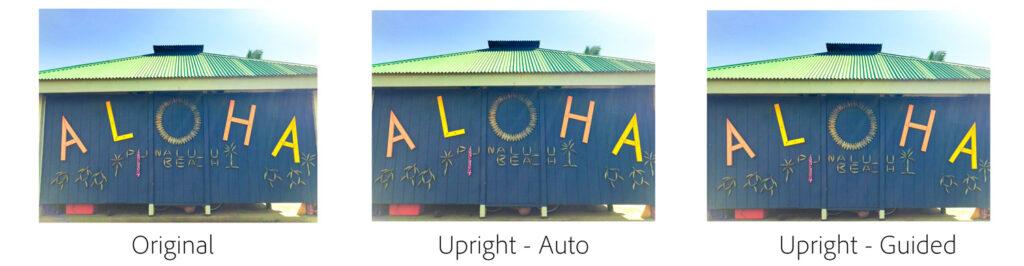 Guided-upright---Aloha_