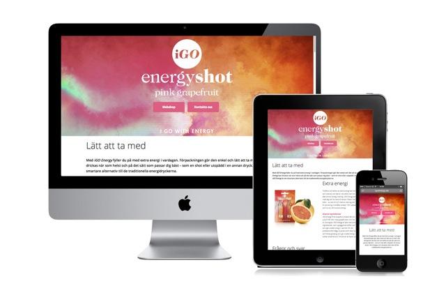 IGO_responsive-design_2