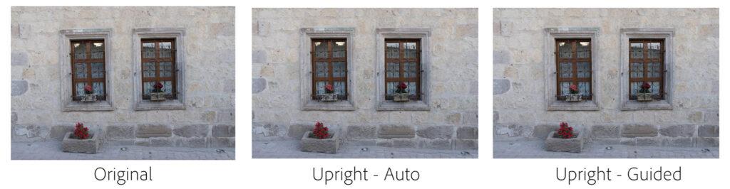 Guided-upright---Turkey_