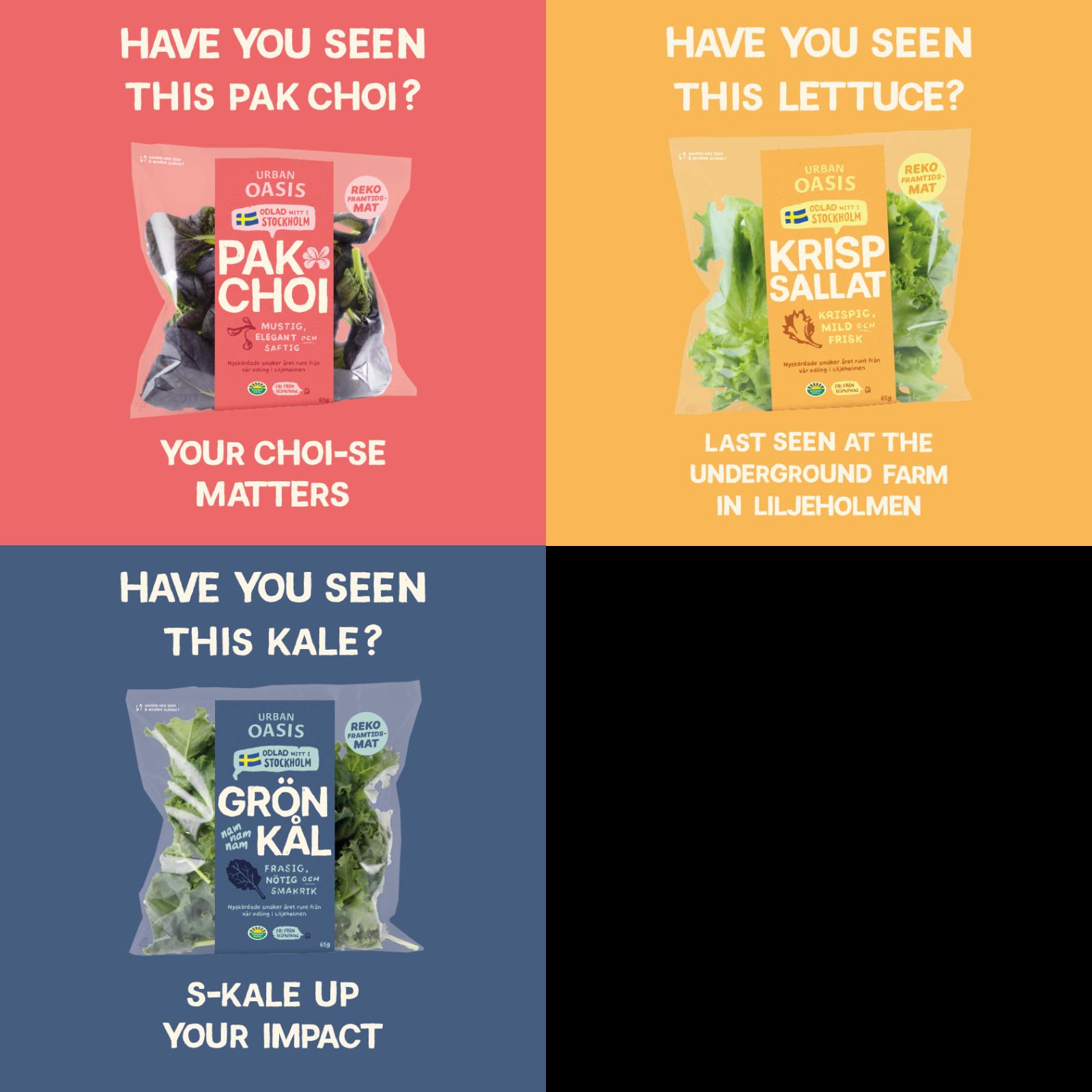 Varumärkeskännedom för Urban Oasis. Kampanj för sociala medier. Bild: Breakout Agency.